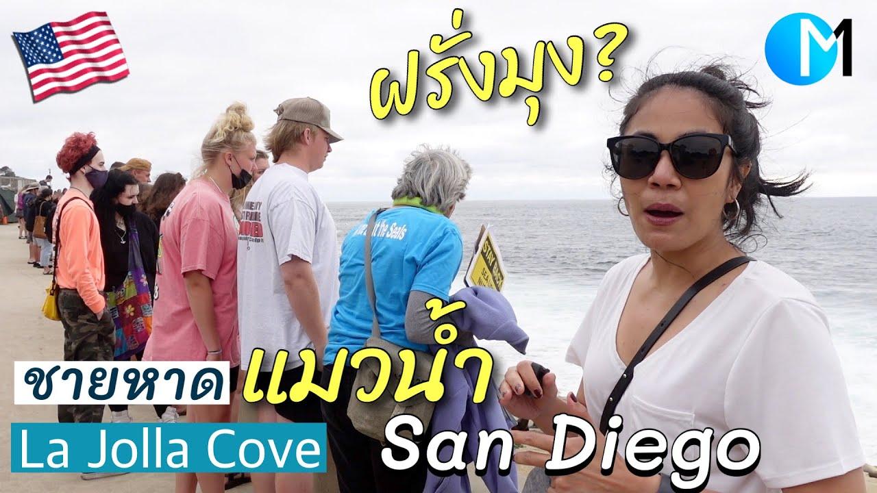 เที่ยวทะเล San Diego ชายหาดแมวน้ำ เกือบแย่! #มอสลา   La Jolla in San Diego,CA  2021