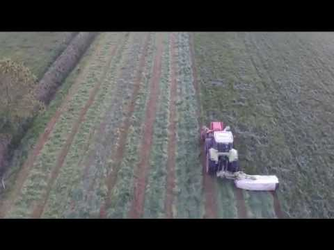 Silage 2015 Cashel Co Tipperary DJI Drone