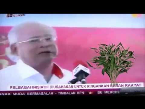 1 Kangkung 1 Malaysia , Lagu Kangkung