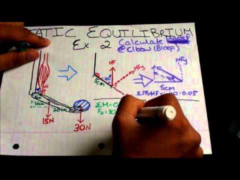 Biomechanics Static Equilibrium Tutorial Example 2