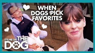 Gambar cover Owner Wants to be Dogs' Favorite no Matter What! | It's Me or the Dog