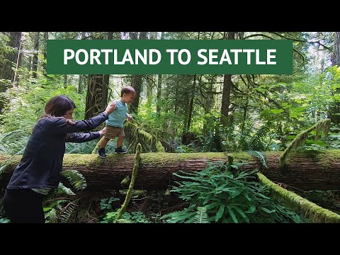 Drive from Portland to Seattle | Nature Stops to Visit | Mt St Helens, Lewis & Clark, Nisqually