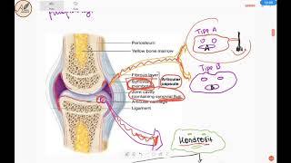 Salam sehat, Bagaimana mencegah stroke pada pasien atrial fibrilasi? mari simak penjelasannya oleh a.