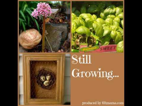 SG562: Resident Farmer Trevor Johnson Discusses Organic, and Hydroponic, Greenhouse Gardening