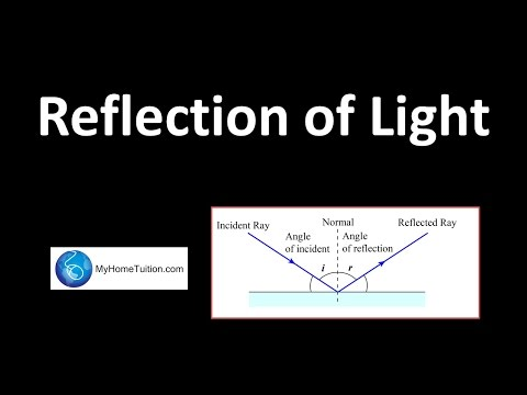 The Laws of Reflection | Light