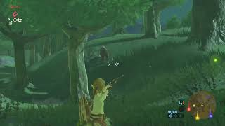 The legend of Zelda : Breath of the Wild  gameplay LIVE [AO VIVO]