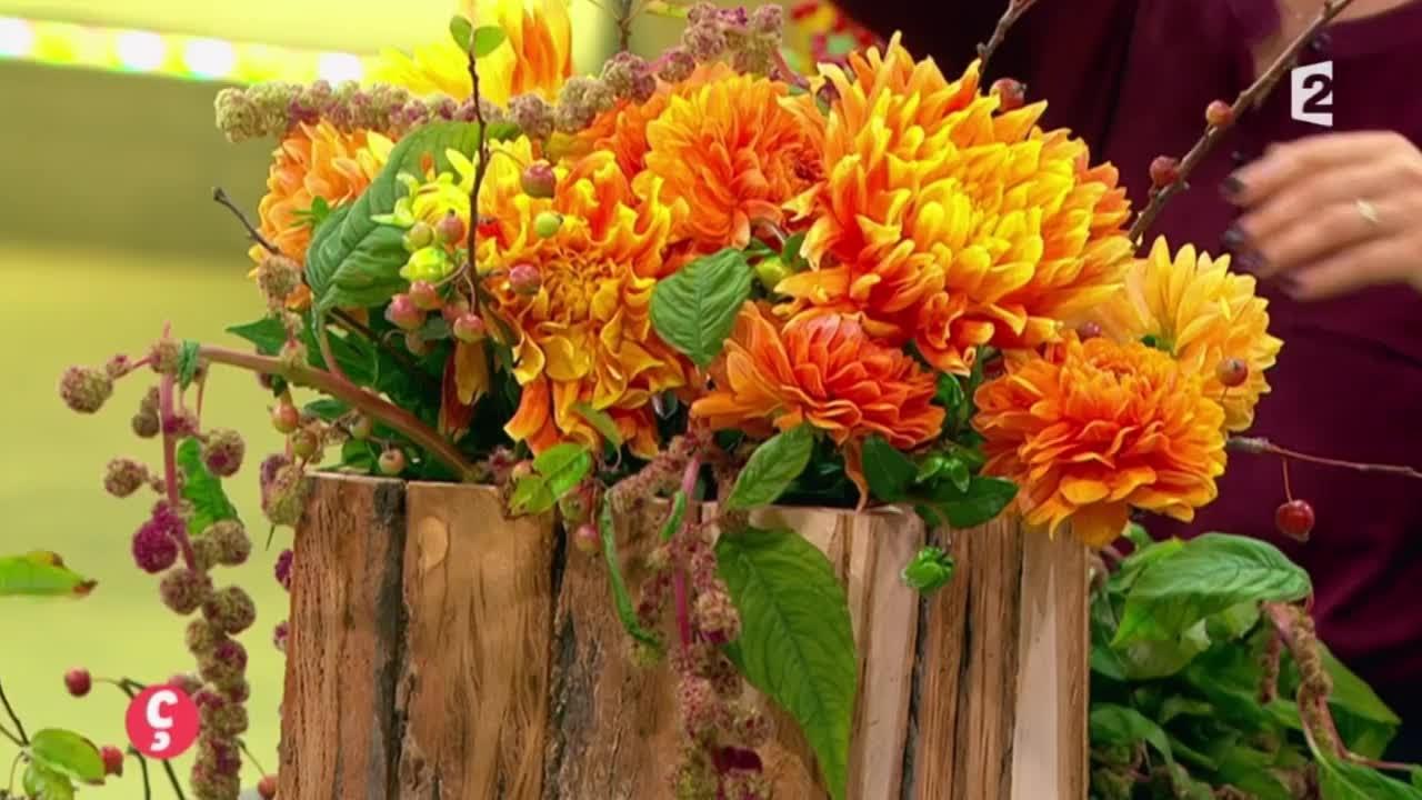 DÉCO Art floral avec le dahlia ! CCVB YouTube