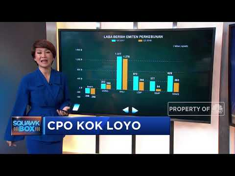 Harga CPO yang Masih Loyo
