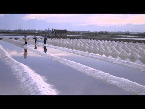 นาเกลือเพชรบุรี  Salt Farm in Phetchaburi Province Thailand
