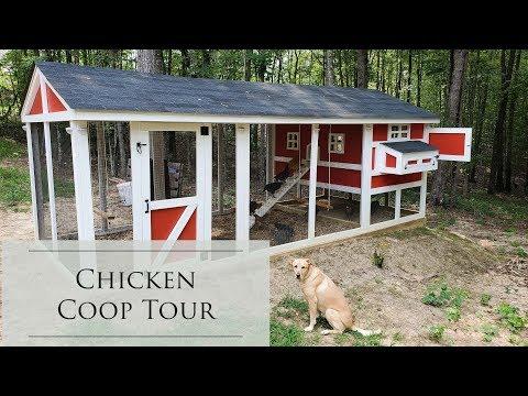 Predator Proof Chicken Coop Tour