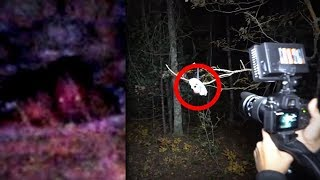 5 Scary Forest Encounters YouTubers Caught on Tape