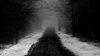 Continuemos el viaje (Letra y musica: Ary Garcia)
