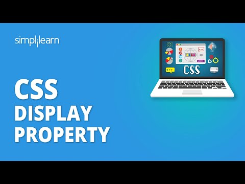 Your One-Stop Guide to Master the Display Property in CSS