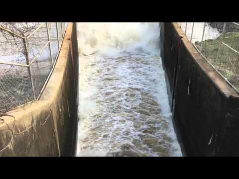 B Everett Jordan Dam Tailrace