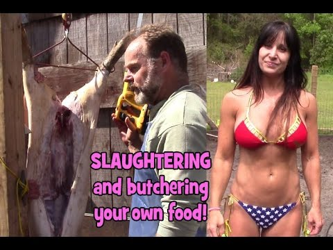 Slaughtering hogs rant. Farmer tells it like it is about killing for food.
