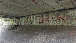 Alter Bridge - The Writing on the Wall (Subtítulos Español)