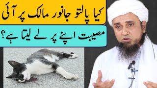 Kya Paltu Janwar Malik Par Aaye Musibat Ko Apne Par Le Leta Hai? Mufti Tariq Masood | Islamic Group
