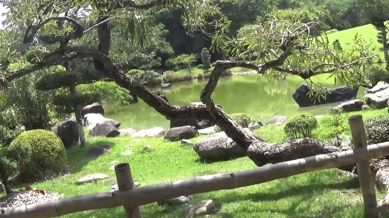 Jardin botanico japones parque botanico de la republica for Jardin botanico el ejido