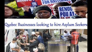 Quebec Businesses looking to hire Asylum Seekers