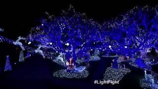 Bachelor Winning Light Show - The Great Christmas Light Fight Season 5
