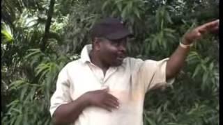 Pa Sukulu