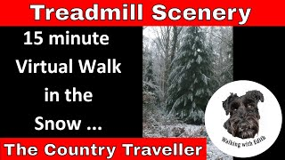 15 minute January Virtual Walk in the snow - Treadmill Scenery - exercise at home 😀