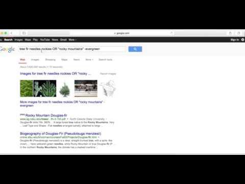 8 Advanced Search Techniques BOOLEAN