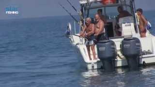 Pesca a Drifting a Porto Barricata - Star Fishing TV thumbnail
