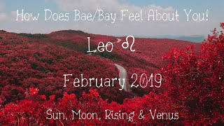 ♌ Leo: WAR of the ROSES! 🌹🌹💔🖤👈