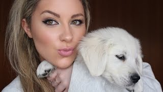 Meet My Golden Retriever Puppy Zara | Vlog
