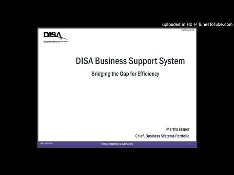 DISA Business Support System - Bridging the Gap for Efficiency