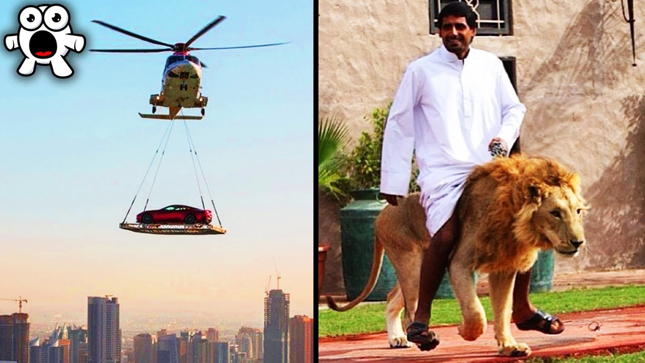 Download Strange Things You'll Only See In Dubai