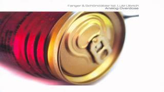 Thomas Fanger & Mario Schönwälder - Analog Overdose (live)