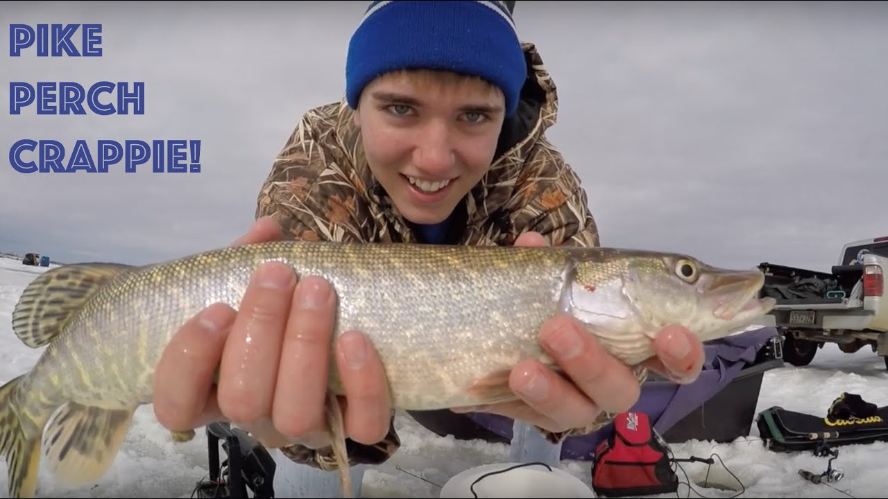 South dakota perch crappie and pike ice fishing youtube for Ice fishing south dakota