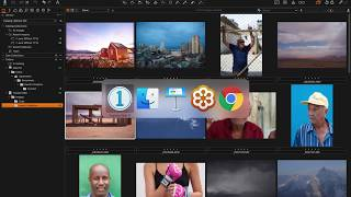 Sessions & Catalogs | Webinar | Capture One