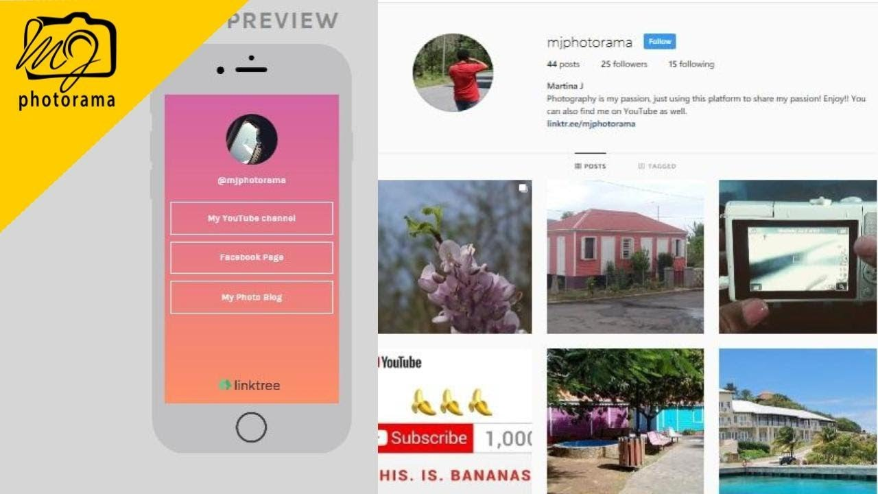 17 66 MB) How To Use LinkTree For Instagram |:| LinkTr ee For