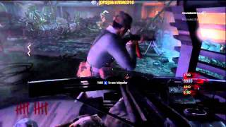 Call Of Duty Black Ops Zombies Sacrificial Lamb