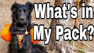 What's in my pack, Wanda edition! Dog backpacking gear for multi day trips!