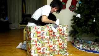 Crazy Cat Lady Spoils her Cats for Christmas