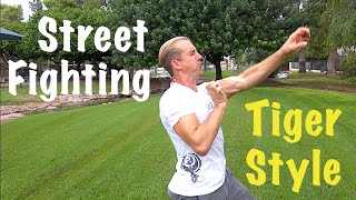 Tiger Style Kung Fu - Street Fighting