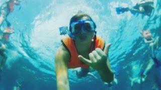 Snorkeling & Exploring Cozumel, Mexico (Fury Beach)