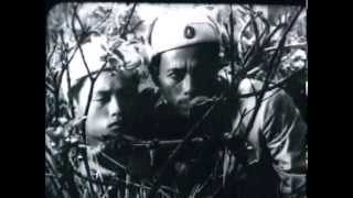 Lửa rừng (1966) / 森林之火 (1970) / Пылающие джунгли