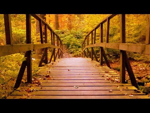 "Peaceful Relaxing Instrumental Music, Meditation Soft Music ""Golden Pathway"" by Tim Janis"