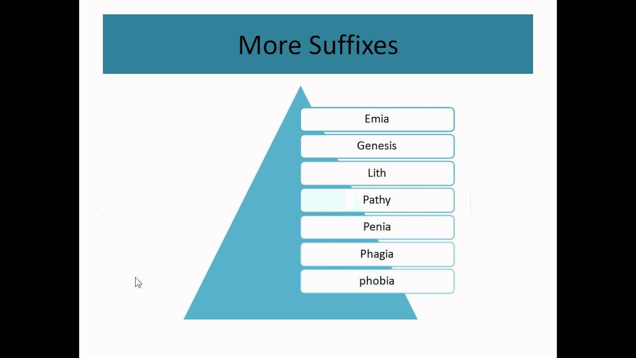 Medical Terminology Part 1_root prefix suffix - YouTube