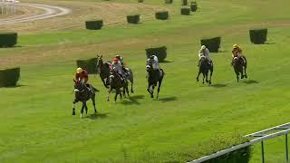 Vidéo de la course PMU PRIX DE L'ORBIQUET