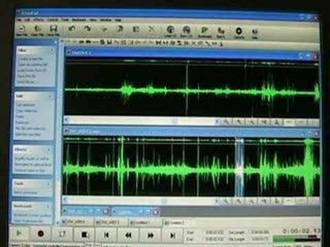 Understanding EVP using Audio Editing Software