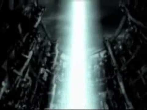 Tanzkrieg - Shock Distortion