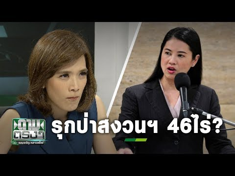 """""""ปารีณา"""" รุกป่าสงวนฯ 46ไร่? - วันที่ 25 Nov 2019"""