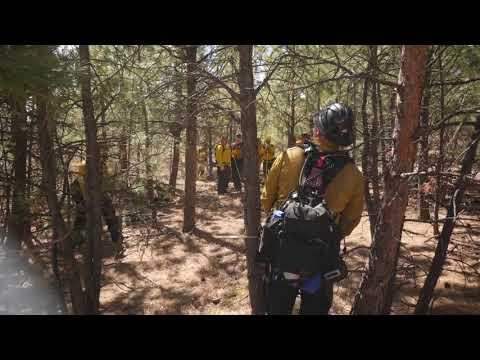 Building a Fire Line