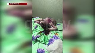 Застал брата с женой: «Вести» публикуют видео с места двойного убийства в Уфе